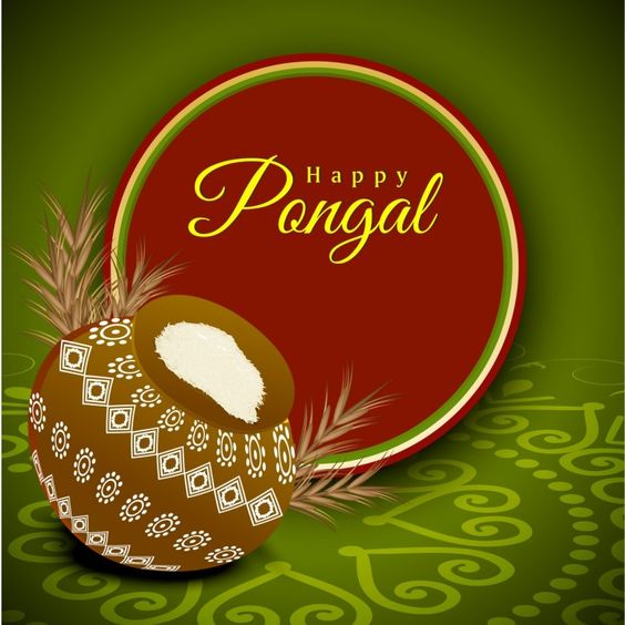 Happy Pongal HD Wallpapers