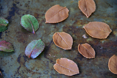 http://www.ablackbirdsepiphany.co.uk/2015/06/chocolate-leaves.html