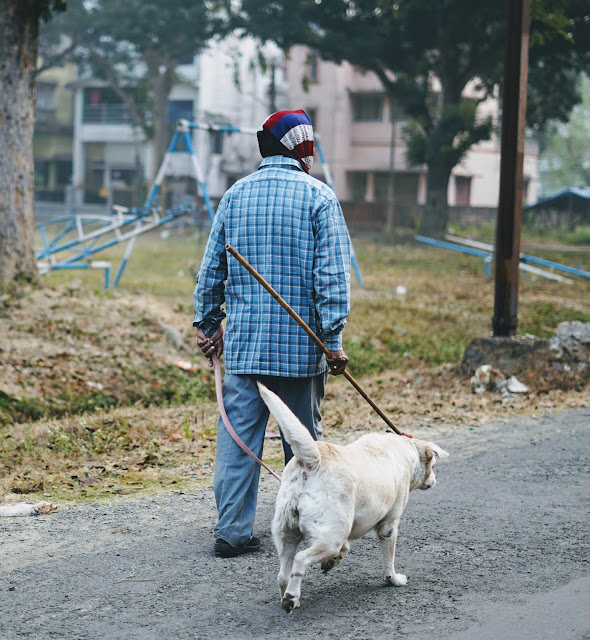 Man Walking With A Lab Captured By Sourajit Saha