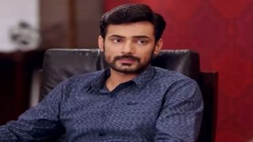 Dil e Jaanam - Episode 11 - Hum Tv Drama - 12th May 2017
