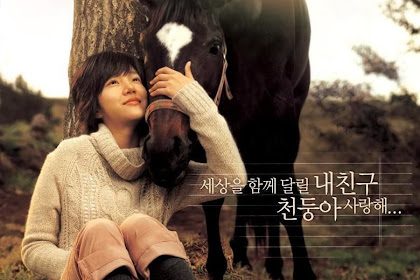 Sinopsis Lump of Sugar / Gakseoltang / 각설탕 (2006) - Film Korea