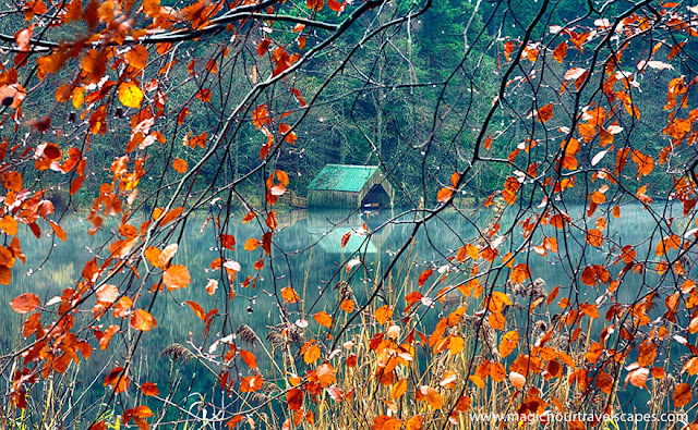 Nature Autumn Landscape Photography
