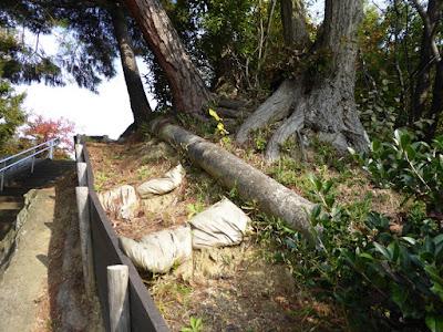 旧香里製造所のスチームパイプ跡 観音山公園
