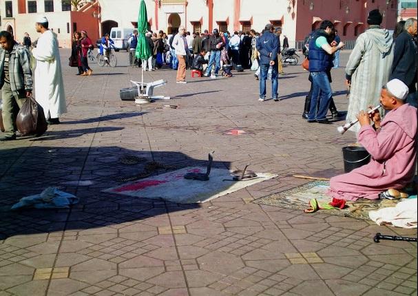 Serpientes en Plaza de Jamma el Fna, Marrakech