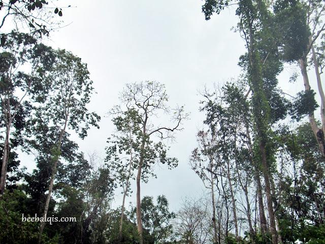 Wisata di Kepulauan Derawan - Goa Halo Tabung