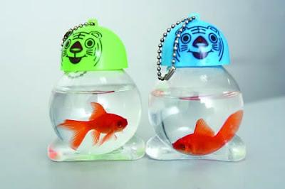 Ikan Hidup Dijadikan Key Chain