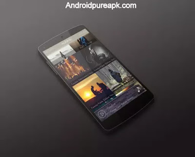 Impulse Music Player Pro Apk Download