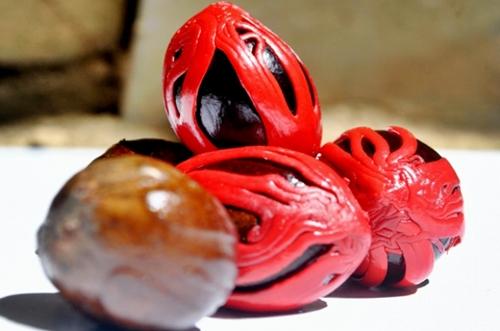 28 Benefits of Nutmeg for Health