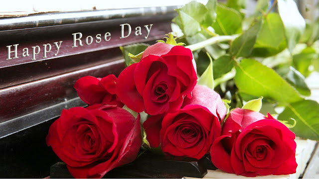 Happy Rose Day Images For Her