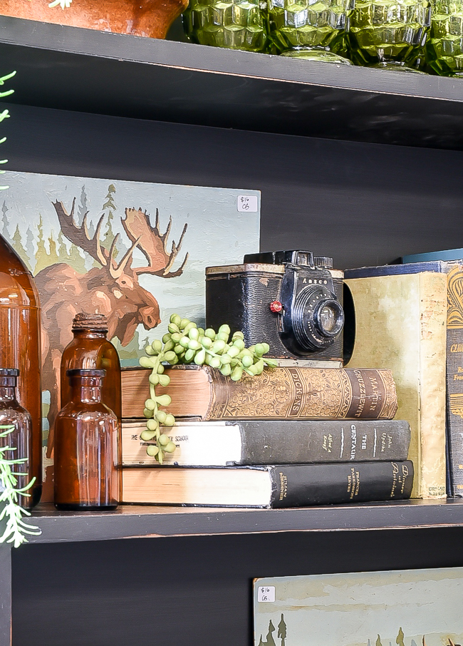 Vintage vignette with books, cameras, greenery and bottles