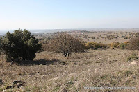 Israel, Travel, Golan Heights