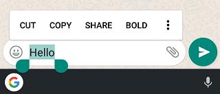 Begini Cara Membuat Teks WhatsApp Tebal, Miring, Dicoret, dan Monospace  2