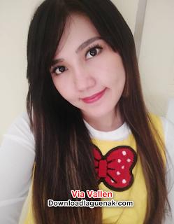 Download Kumpulan Lagu Via Vallen Terbaru 2018 New Update