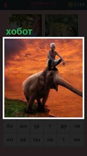 651 слов у слона очень длинный хобот 13 уровень