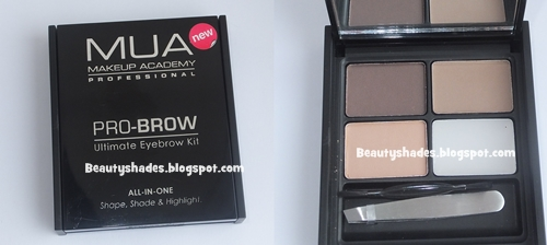 MUA  Brow Kit