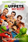 El tour de los Muppets (2014) ()