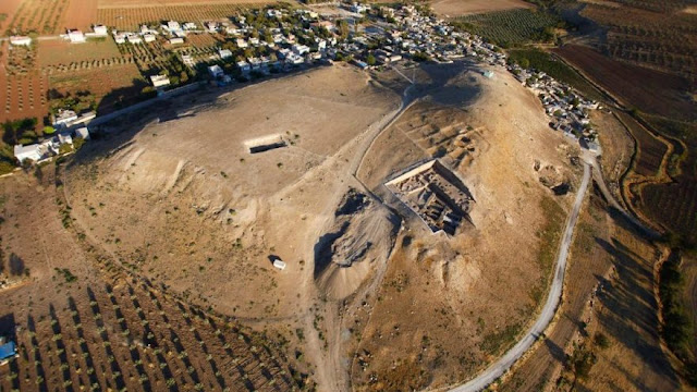 4,000-year-old olive seeds unearthed in SE Turkey