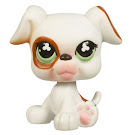 Littlest Pet Shop Boxer Generation 2 Pets Pets