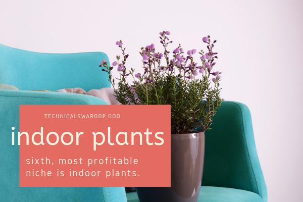 sixth, most profitable niche is indoor plants.
