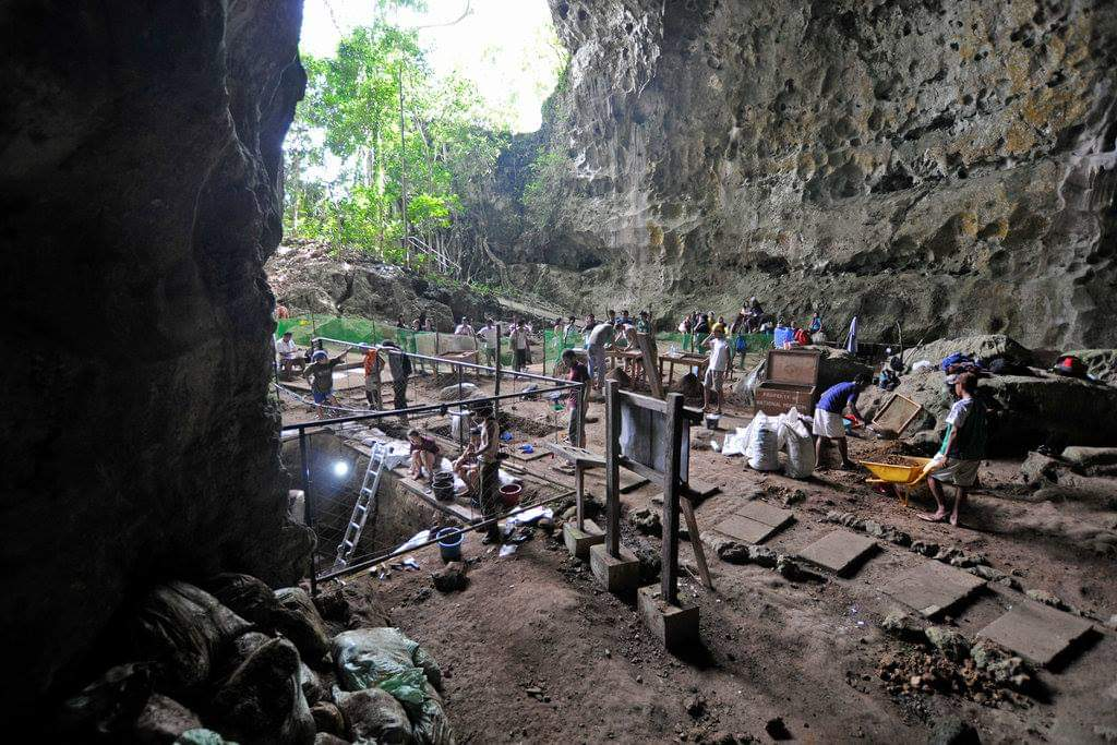 New species of ancient human discovered in Philippine cave