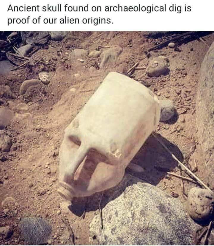 ALIEN SKULL DISCOVERED ON SOOKE HARBOUR SHORE