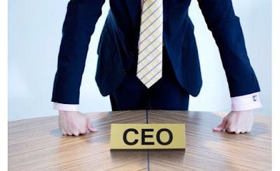 Şirket CEO'seti