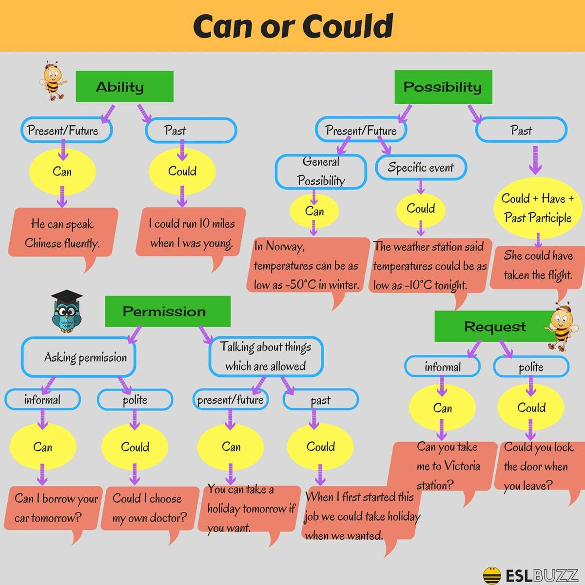 Click On Modal Verb Can Vs Could