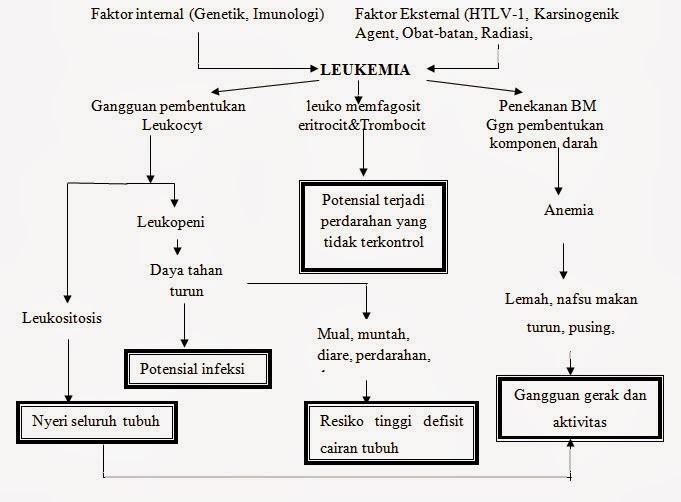 pathway Leukema Limfoblastik Akut (LLA) atau Akut Limfoblastik Leukemia (ALL)