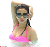 Heena Panchal in Bikini Portfolio Stunning Indian Actress Beauty ~  Exclusive Galleries 010.jpg