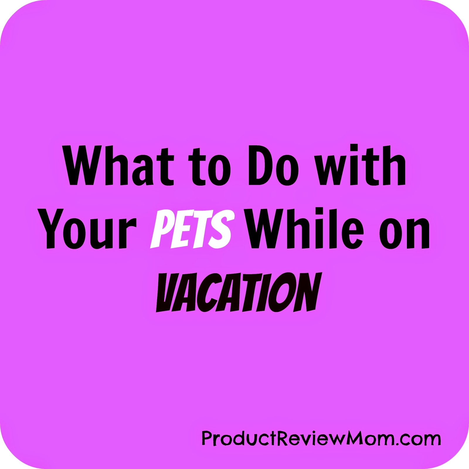 What to Do with Your Pets While on Vacation (Summer Blog Series) via ProductReviewMom.com