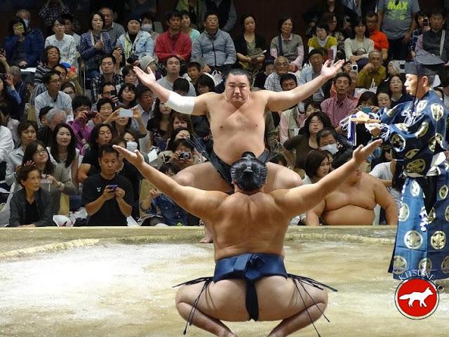 le combat des 2 yokozuna au basho de Kyoto 2015