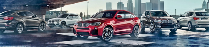 2017 BMW X7 Pictures