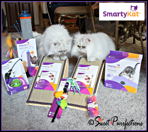 Truffle and Brulee claiming their SmartyKat® items