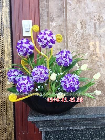 Hoa da pha le o Nguyen Khang