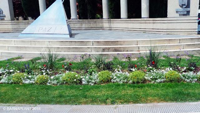 Solución Floral - macizo ornamental Monumento a la Paz (Huesca)
