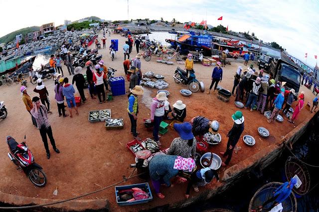 cá được những con tàu ra khơi tập kết về cảng cá cho các chị, vợ,em,mẹ...đem về chợ bán.