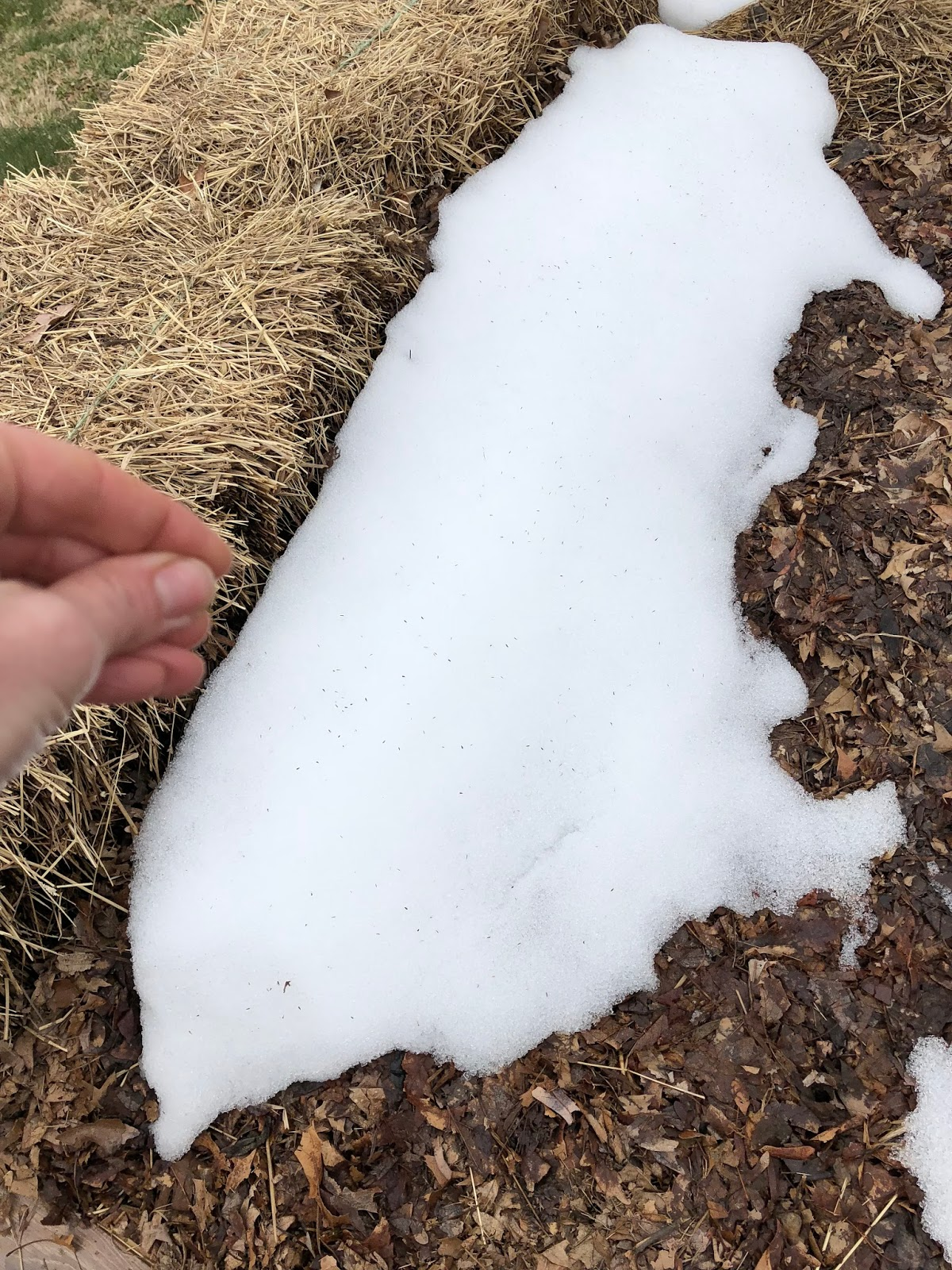 Sun - Snow - Rain - Freeze - Sun