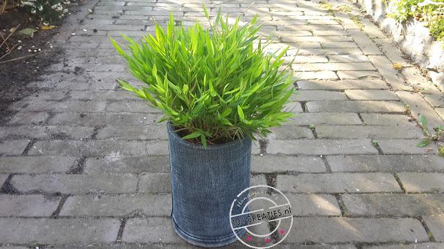 blik en jeans pimpen naar plantenpot