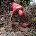 Após 28 da tragédia, mais um corpo é encontrado em Brumadinho, este é de um baiano que estava desaparecido