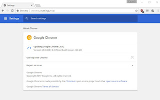 Update the Google Chrome browser for the latest version always