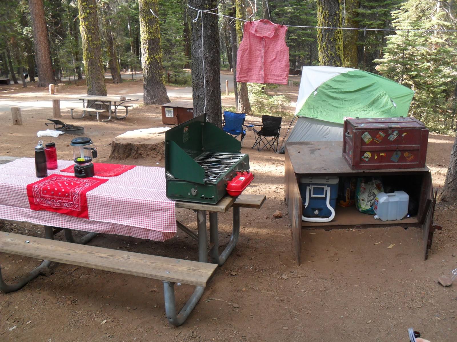 Backpacking Bettie: Crane Flat Campground