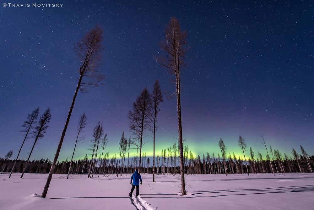 Zorza polarna sfotografowana w noc z 16 na 17.02.2016 r. (Credit: Travis Novitsky, Minesota, Stany Zjednoczone)