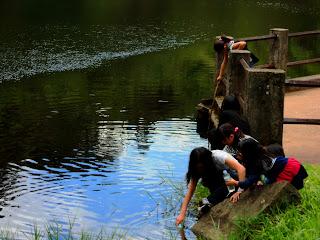 Crianças Brincando no Lago das Carpas - Parque da Cantareira, São Paulo