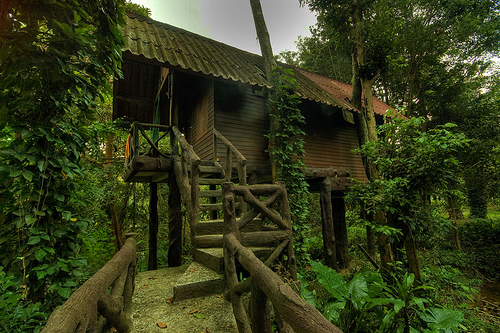 Amazing 3d Wallpapers Download Top 20 Beautiful And Amazing Tree House Wallpapers Pics