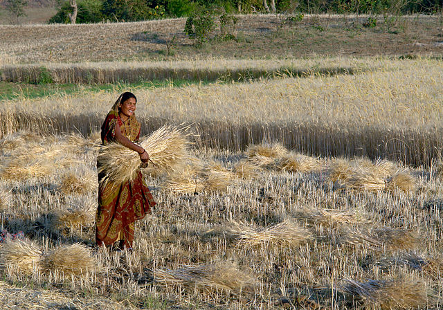 List of Agriculture Related Days in India (Agriculture in India)
