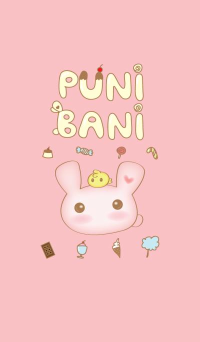 PuniBani