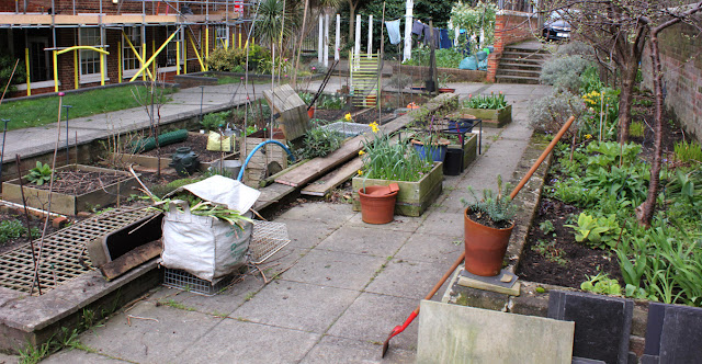 Urban Veg Patch - Urban food garden