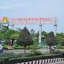 Tham quan vườn quýt Lai Vung - Phấn khích trên từng múi quýt