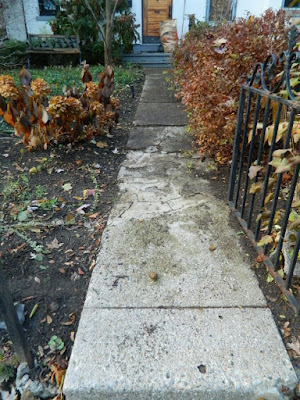 Toronto Cabbagetown Fall Front Yard Garden Cleanup by Paul Jung Gardening Services after