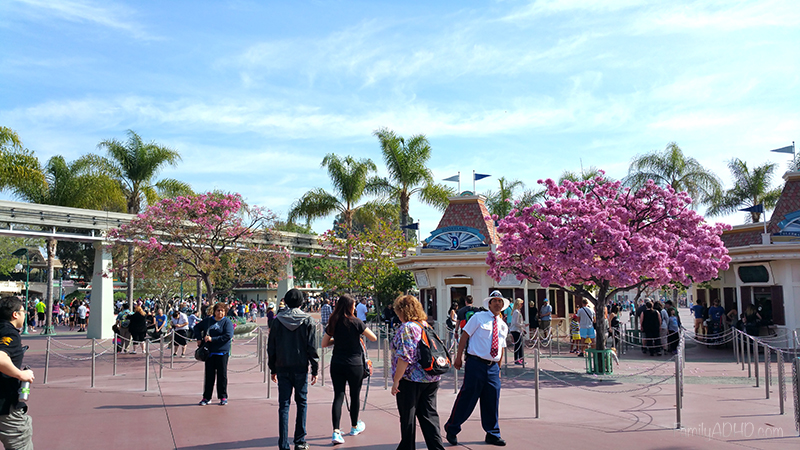 Top Tips Disneyland Family Travel Guide